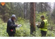 Мастер на лесосеках -  повышение квалификации