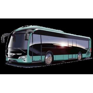 Водитель автомобиля, осуществляющий международные перевозки пассажиров