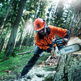 Переподготовка, повышение квалификации вальщика леса