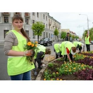 Переподготовка, повышение квалификации рабочего зеленого строительства