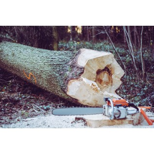 Безопасные способы валки леса