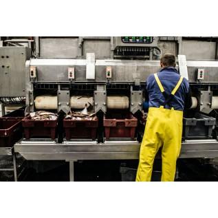Наладчик контрольно-измерительных приборов и автоматики (по наладке оборудования ГРП (ГРУ), объектов газопотребления, котлов, пароперегревателей, экономайзеров, печей независимо от вида топлива, сосудов, работа